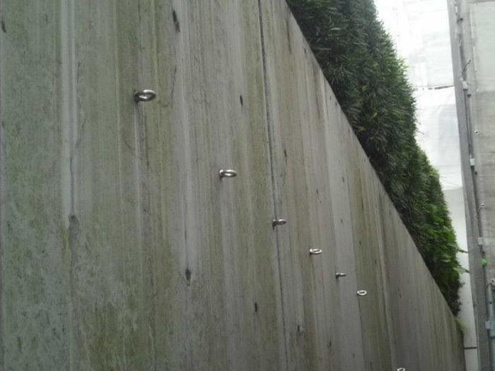 1.施工前 土止めのコンクリート擁壁 藻、黒カビが発生。クラックも多数発生している。