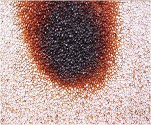 断熱材燃焼試験・ BPS断熱材 フネンダン専用断熱材 燃焼箇所は炭化するが、溶けずに形状を維持する。