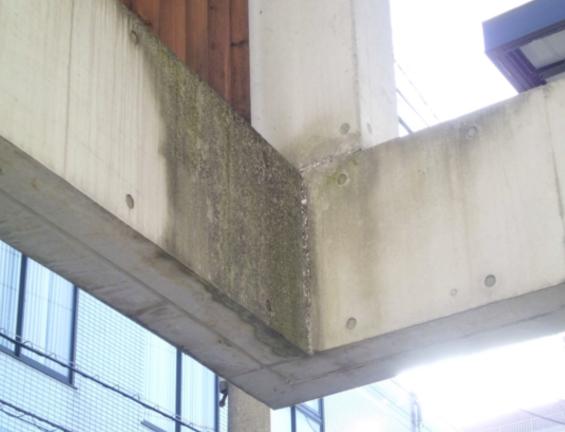 コンクリート打ちっぱなし仕上げの再生・保護工事 Sクリートガード2